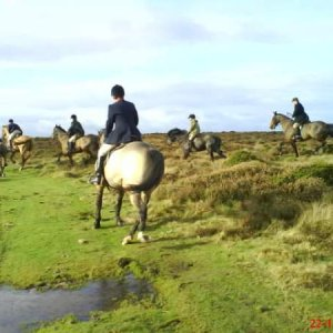 Quantocks the hunt