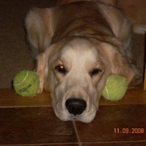 Me and my tennis balls