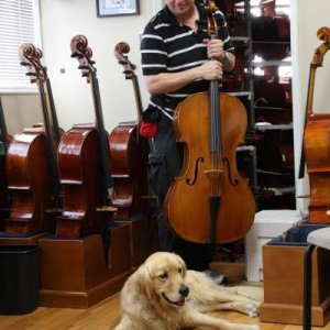 Hanging out in the cello room
