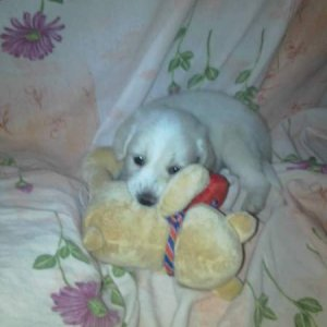 before sleeping with his teddy bear xD